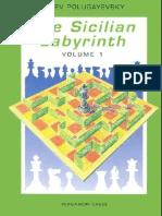 Polugayevsky, L. - Thw sicilian Labyrinth Vol.1 - Pergamon 1991.pdf
