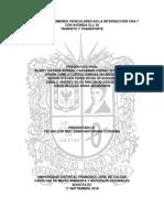 ESTUDIO DE PEATONES.docx