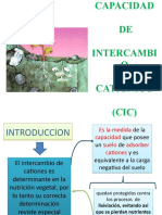 Capacidad de Intercambio Cationico
