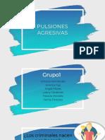 Pulsiones Agresivas