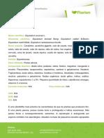 CAVALINHA-1.pdf