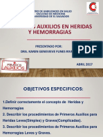 Pri Aux HyH Que EC presentacion Web.pdf