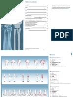 AOOTA_Classification_2018_Classification_brochure_1807031108.pdf
