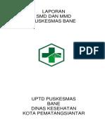 LAPORAN SMD DAN MMD AEK BANE.docx