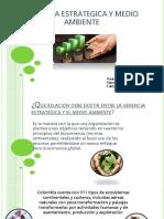 Gerencia Estrategica y Medio Ambiente , Presentacion Eje 4 (1) (1)