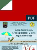 Anquilostomiasis, Estrongiloidiasis y larva migrans cutanea.pptx
