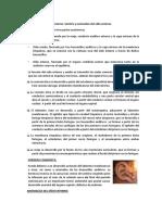 7 y 8 SEMINARIO 2.docx