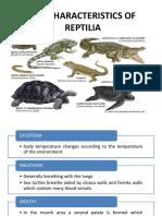 Ciri Dan Karakteristik Reptilia1