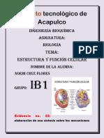 Tema 2 Biologia