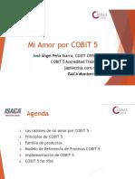 COBIT love.pdf