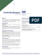 Lactobacillus_Sporogenes