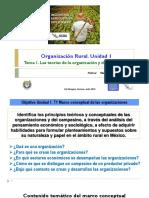 Unidad 1. Teoría de la organización y campesinado