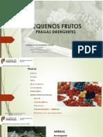 pequenos_frutos_pragas_emergentes.pdf
