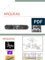 Clase Arqueas
