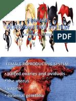 FEMALE REPRODUCTIVE - HISTOLOGY 2.pdf