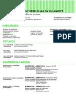 32 Curriculum Vitae Curioso Verde