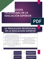 La Pedagogía Profesional en La Educación Superior
