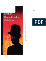 Ciudad Berraca (2xhoja47) - Rodrigo Ramos Bañados (2)