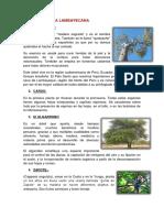 FLORA LAMBAYECAN1.docx