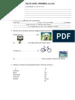 FISA DE  LUCRU pronumele CES.docx