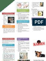 Leaflet Rabies.docx