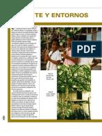 Influencia africana en la etnografia de Colombia