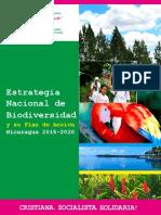 Estrategia Nacional 2015-2020.pdf
