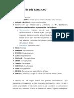 antecedentes sancayo.docx