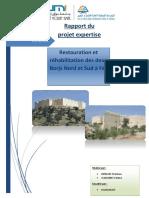 projet-expertise.pdf