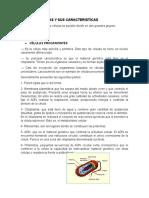 TIPOS DE CELULAS Y SUS CARACTERISTICAS.docx