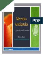 Presentation-MercadosAmbientales_Bayon_FINAL.pdf