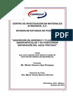 ADSORCION NANOPARTICLES.pdf