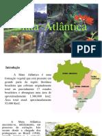 Mata Atlantica.pdf