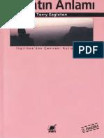 Terry Eagleton - Hayatın Anlamı Ayrıntı Yayınları.pdf