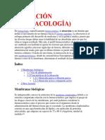 Consulta de Toxicologia