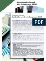 CECM Prospectus