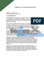 39.B- Derecho Ambiental. Gonzalez Acosta