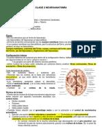 TCP ANATO 2 CLASE 2.pdf