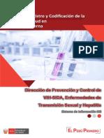 Manual HIS-DPVIH_2019.pdf