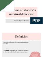 Sx absorción intestinal deficiente