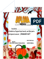 DIPLOMA BOSTANEL.doc