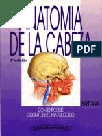 Anatomia de la cabeza.pdf