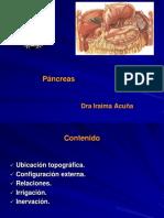 Glándula Anexa del Aparato Digestiva, Pancreas. Aspectos Importantes y Relevantes