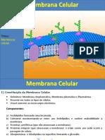 MEMBRANA PLASMÁTICA PPT