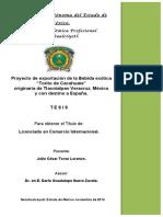 TESIS_COMPLETA_9 El torito.pdf