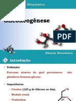 AULA 04 - Gliconeogênese