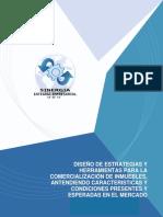 Diseño de Estrategias y Herramientas Para La Comercialiacion de Inmuebles, Atendiendo Caracteristicas y Condiciones Presentes y Esperadas en El Mercado.