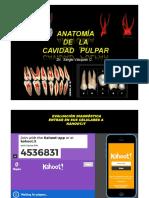 Clase anatomia pulpar 2019.pdf