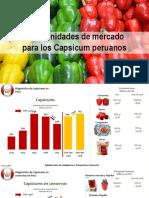 1. Juan Portugal - Oportunidades de Mercado Para Los Capsicum Peruanos PROMPERU - MODULO 3