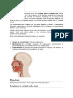 folleto Aparato digestivo.docx